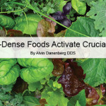 Nutrient-Dense Foods Activate Crucial Protein