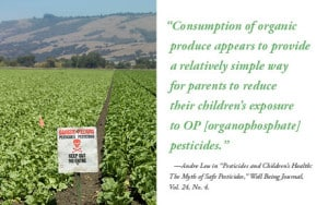Pesticides and Children's Health: The Myth of Safe Pesticides