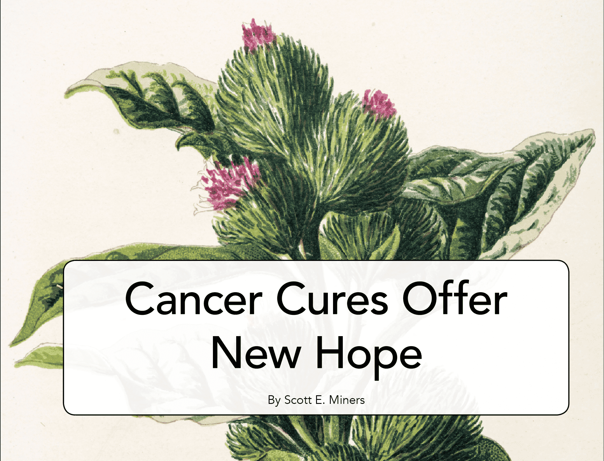 Cancer Cures Offer New Hope Well Being Journal