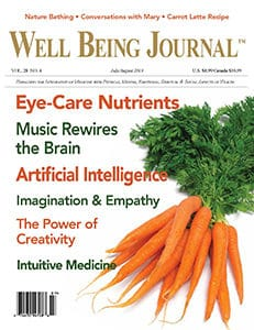 The Well Being Journal July/August 2019 Cover