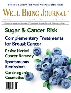 The Well Being Journal, November/December 2019