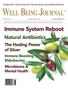 The Well Being Journal January/February 2020 cover