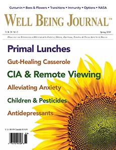 Well Being Journal Spring 2020